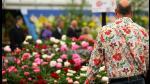FOTOS: Los jardines más espectaculares en el Chelsea Flower Show de Londres - Noticias de chelsea flower show