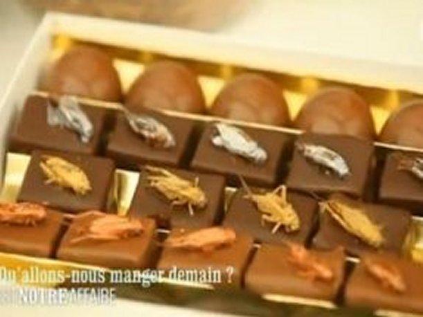 Francia comer chocolates rellenos de insectos es el for Comida francesa en lima